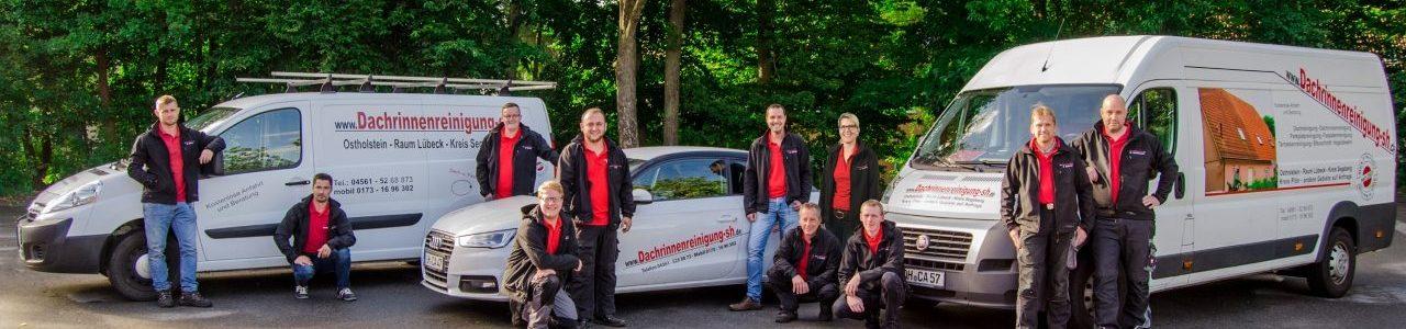 Dachreinigung in Hamburg und Schleswig Holstein
